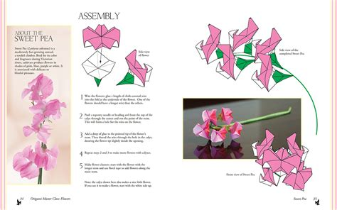 Origami Master Class Flowers - origami master class flowers on behance