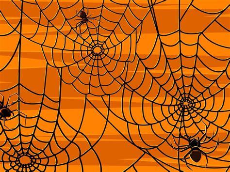 imagenes de halloween diablitas 卡通万圣节 蜘蛛 万圣节的 蜘蛛 网图片