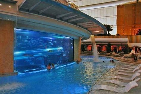 cool swimming pools cool swimming pool cool swimming pools pinterest