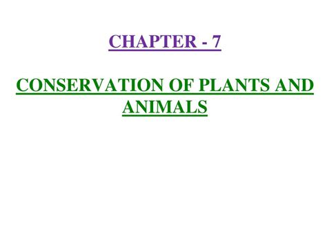 section 22 1 introduction to plants top 28 plants chapter ppt plant processes chapter ppt