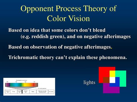 opponent process theory of color opponent process theory of color opponent process theory 1