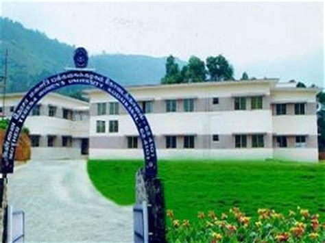 Mba Colleges In Kodaikanal by Teresa S Bca Mba Mca Ug