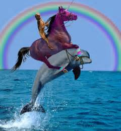 Dog riding a unicorn riding a dolphin