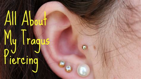 ear tattoo pain level image gallery tragus aftercare