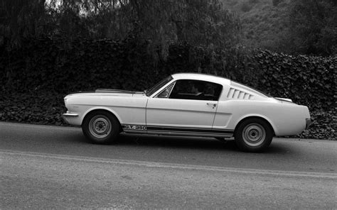 ford shelby gt350 mustang 1964 widescreen car photo