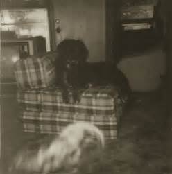 marvin eley: real ghost pictures