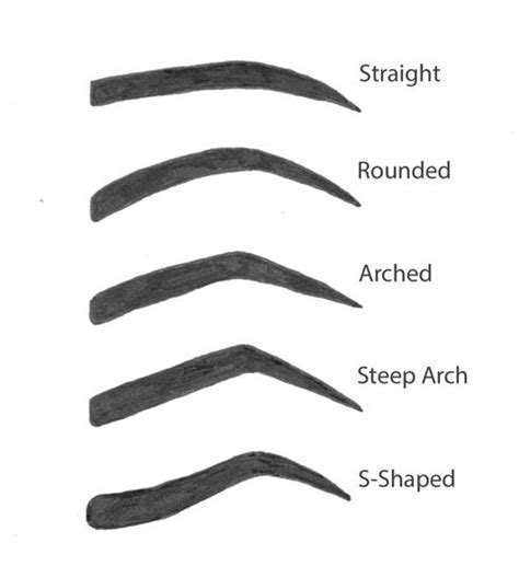 eyebrow shape template 4 easy steps to the eyebrows eyebrows arched