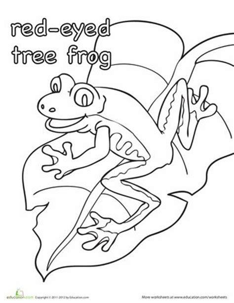 coloring pages of a red eyed tree frog color the red eyed tree frog