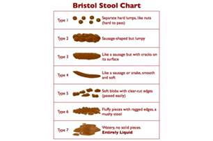 bristol stool chart it s a chart constipation guru