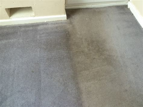 rug doctor reviews uk the rug doctor reviews uk