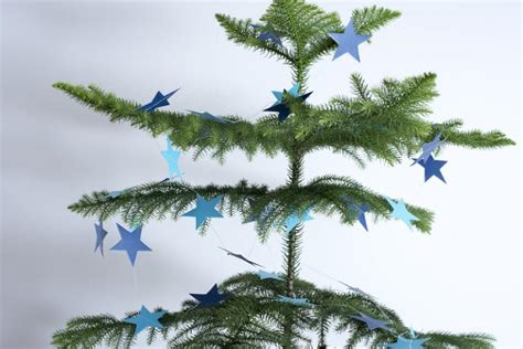 photo  natural pine christmas tree sparsely decorated