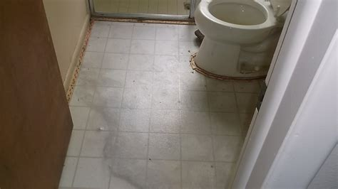 water damage in bathroom mold treatment gallery damage restoration