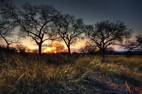 libro digital landscape photography in african landscape photography www pixshark com images galleries with a bite