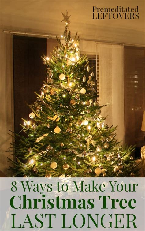 8 ways to make your christmas tree last longer 24 7 moms