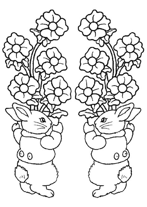 pictures to colour pictures to colour rabbits