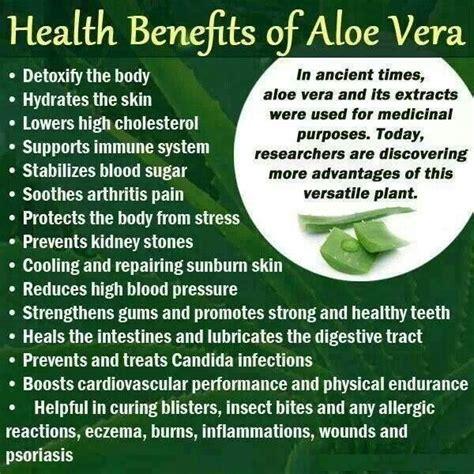 Vs Dress Stevia health and health benefits of aloe vera 2058629