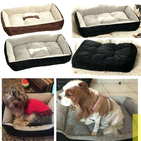 tear proof dog bed dog sleeping on bed painting tear resistant dog beds dog beds and costumes
