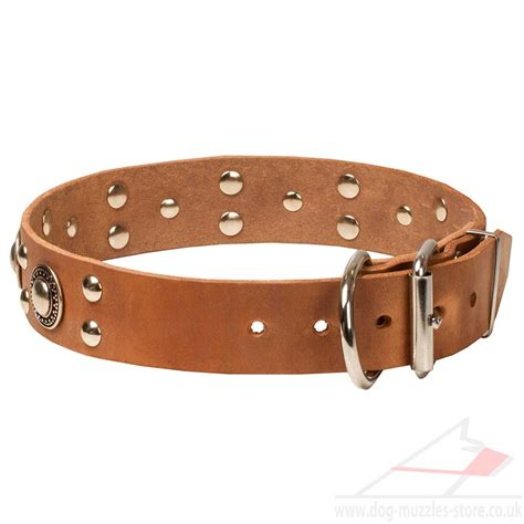 Handcrafted Collars - large breed collars handmade collars uk 2015 163