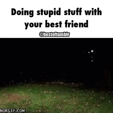 doing stupid stuff with your best friend gif kick
