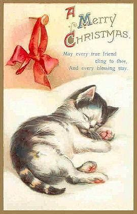 amazing christmas cards  cats kitty bloger