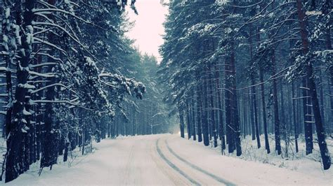 snow wallpaper pinterest snow forest wallpapers wallpaper cave