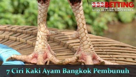 ciri kaki ayam aduan bangkok asli pembunuh super mematikan