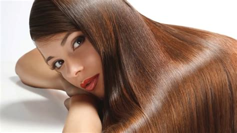 do yorkies have thick hair or then hair grow thick hair in 15 days easy home remedies no hair
