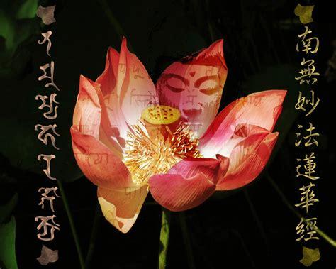 buddha in the lotus daimoku buddha on the wall