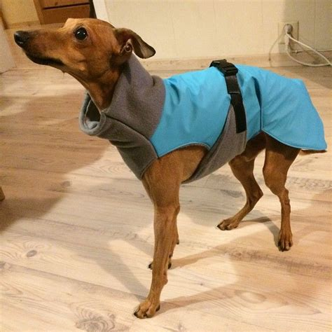pattern greyhound coat 17 best images about dog costumes clothes on pinterest