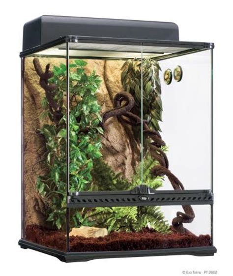 reptile l stand diy exo terra medium rainforest habitat kit for sale
