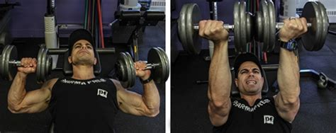 dumbbell bench press twist chest day 101 top dumbbell exercises the zone