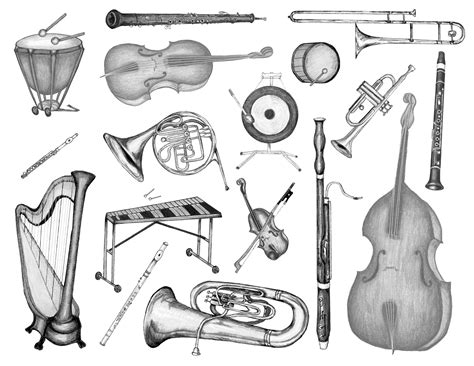coloring pages instruments of the orchestra a kaleidonotes study guide for music class tammy carter