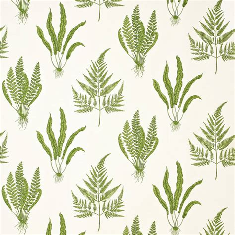 botanical print wallpaper roman blinds in woodland ferns fabric green dapgwo202