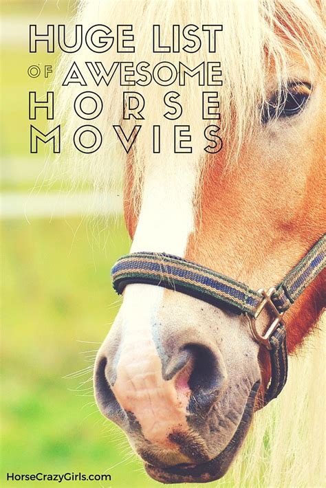 film love on a horse the best horse movie list