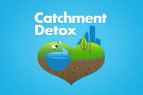 Abc Catchment Detox Play by Quizzes Abc Science