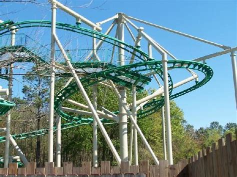theme park valdosta the cheetah roller coaster picture of wild adventures