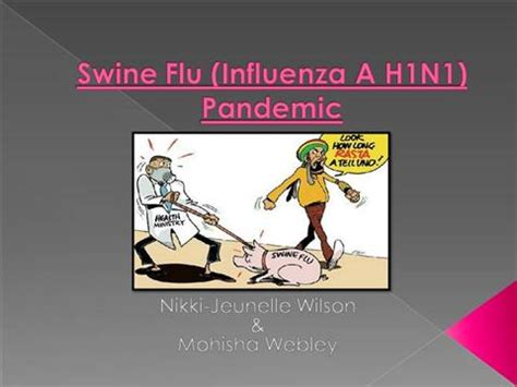 Pandemic Card Template by Swine Flu Influenza A H1n1 Pandemic Pr Authorstream