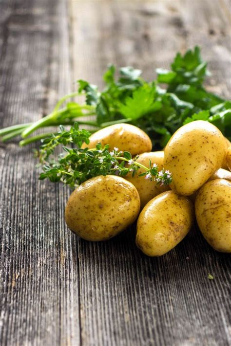 piantare patate in vaso come coltivare le patate in vaso donnad
