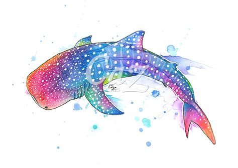 rainbow whale shark watercolor painting by cazz whalesharks