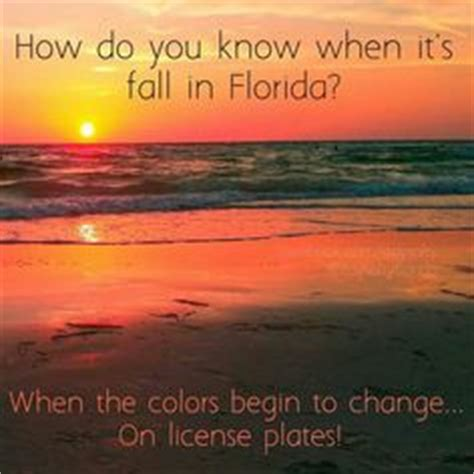 Florida Quotes | Fall In Florida Quotes