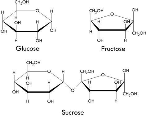 sucrose structural diagram enc1102 high fructose corn syrup