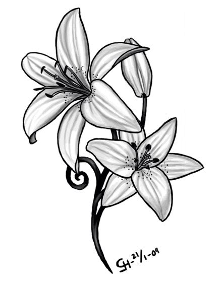 may birth flower tattoo daffodil march birth flower ideas lilly may
