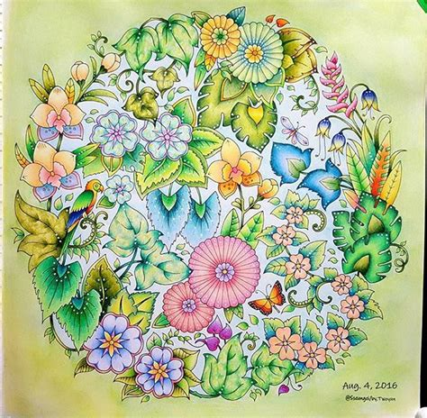 coloring books with colored pencils 243 best enchanted forest secret garden images on