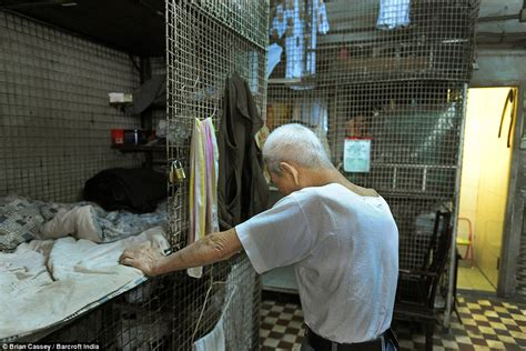 hong kong s caged dogs poverty stricken forced