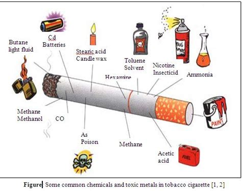 Best Cigarette Detox by Toxic Metals In Tobacco Cigarettes And Tobacco Products