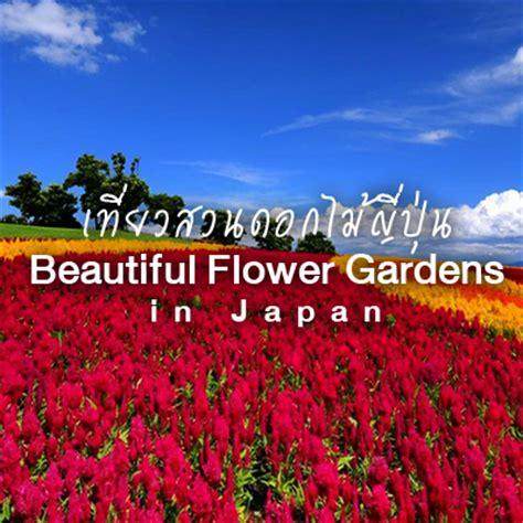 flower garden in japan beautiful flower gardens in japan