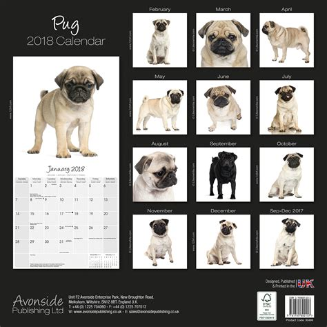 pug calendars pug calendar 2018 30469 18 pug breeds