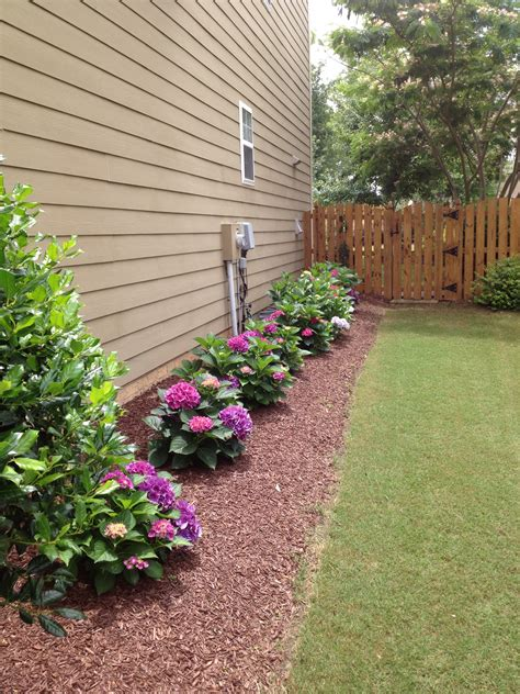side of the house 10 cheap but creative ideas for your garden 4 side yard landscaping side yards and