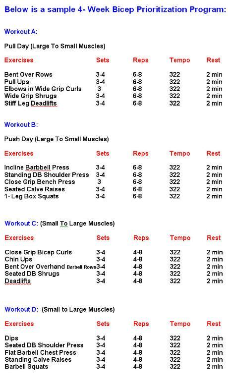 bodybuilding workouts chartbodybuilding workout schedule