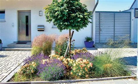 pflegeleichte gartenbepflanzung pflegeleichte g 228 rten lavendel und gr 228 ser windig